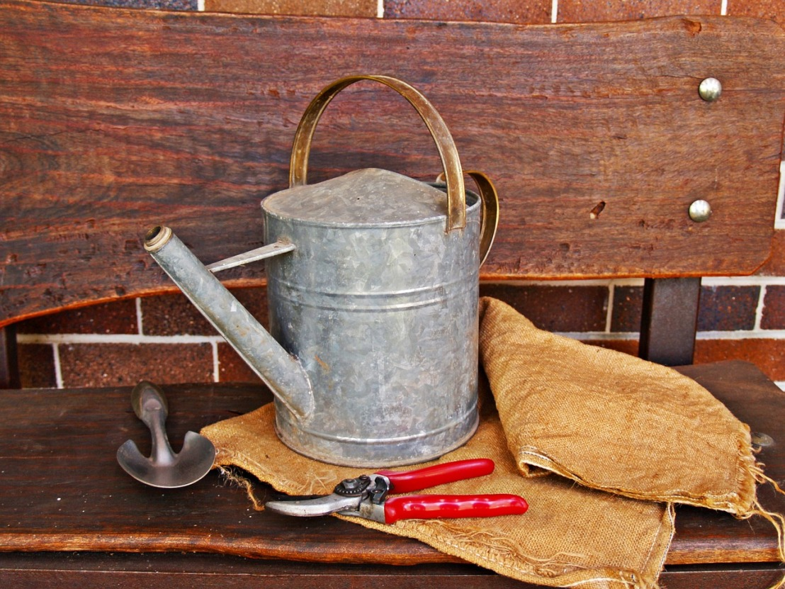 watering-can-1466491_1280(2)