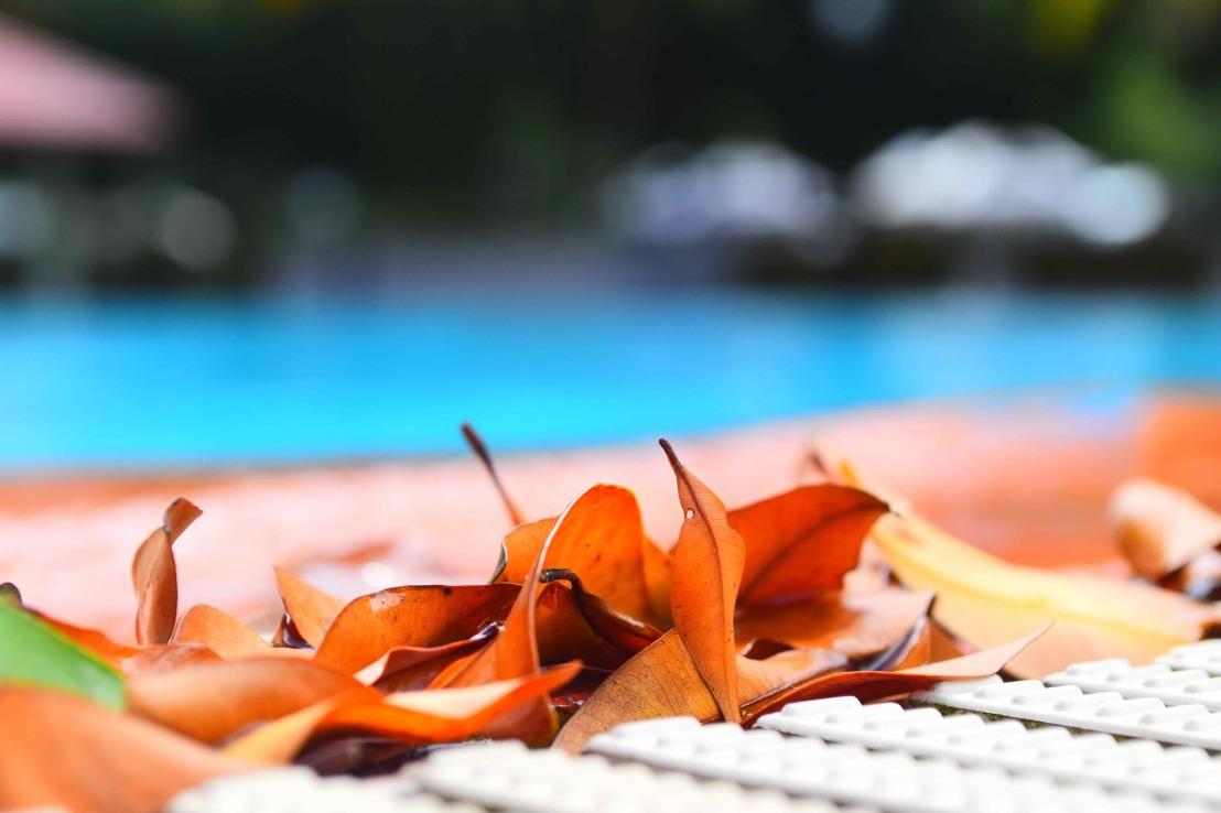swimming-pool-2461422_1920